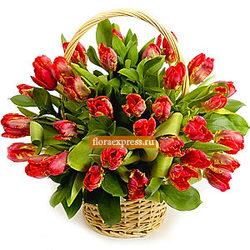 «Фан-Фан-тюльпан»